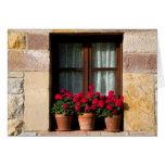 Window flower pots in village greeting card