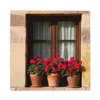 Window flower pots in village wood coaster