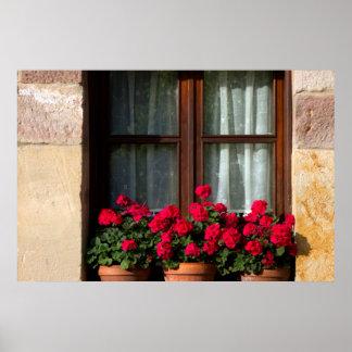 Window flower pots in village print
