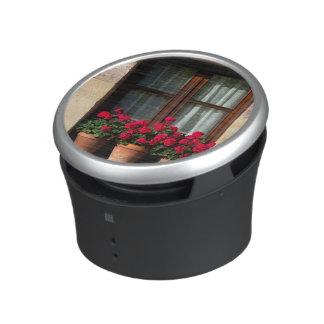 Window flower pots in village speaker