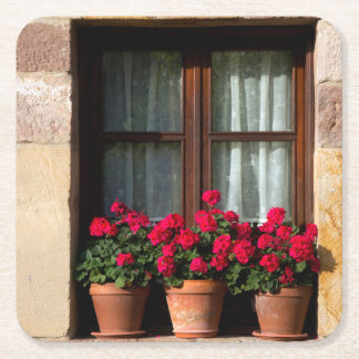 Window flower pots in village square paper coaster