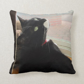Window Model Lucy Throw Pillows