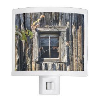 Window on Cabin Night Light