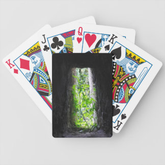 Window Plant Bicycle Playing Cards