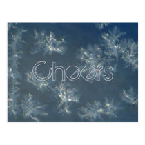 Window Snowflakes Postcard