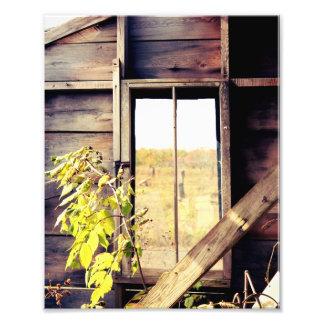 Window to Fall - Photo Print