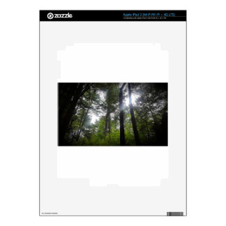 window-to-the-canopy-kevin-humphrey skin for iPad 3