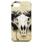 Windows and green animal bone iPhone 5 cover