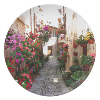 Windows, balcony and flower alleys melamine plate