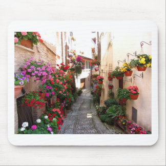 Windows, balcony and flower alleys mouse pad