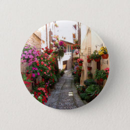 Windows, balcony and flower alleys pinback button