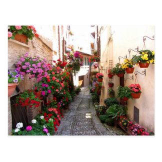Windows, balcony and flower alleys postcard