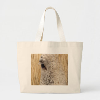 Windows to the Soul Canvas Bags