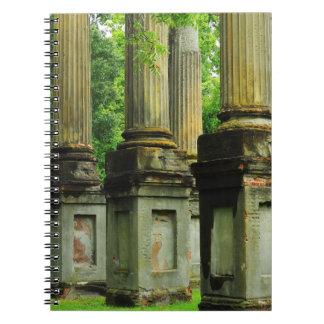 Windsor ruins columns, antebellum south. notebook