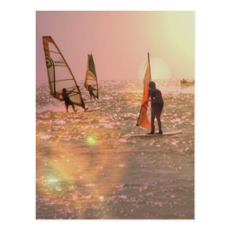 Windsurfers Postcard