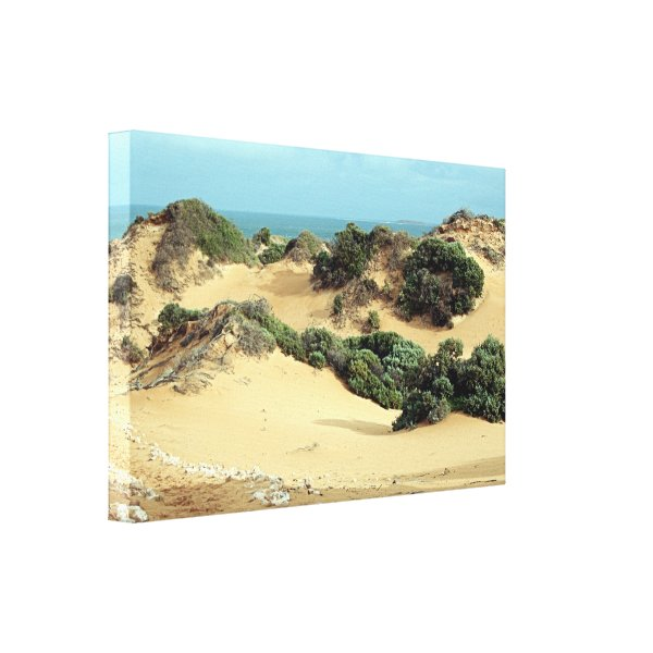 Windswept sand dunes, Australia Canvas Print