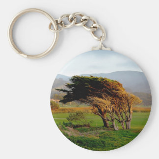 Windswept Trees Basic Round Button Keychain