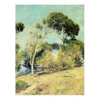 Windswept Trees, Laguna by Guy Rose Postcard