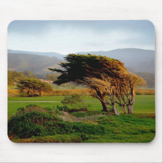 Windswept Trees Mouse Pad