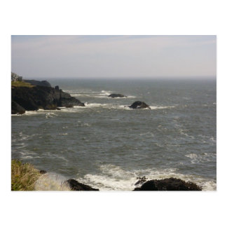 Windy Day on the Oregon Coast Postcard