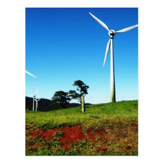 Windy Hill Giants Postcard