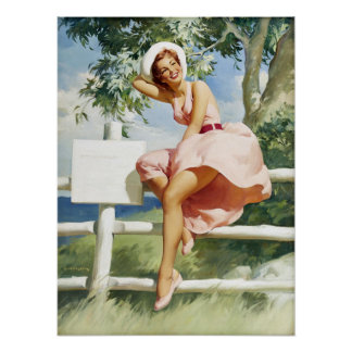 Windy on Fence Pin Up Print