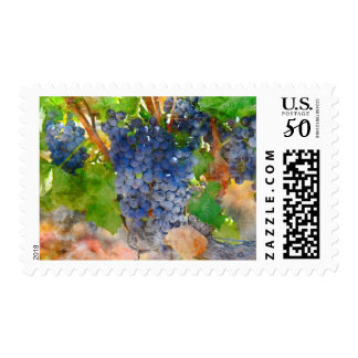 Wine and Grape Postage Stamps for Wine Lovers