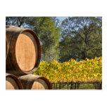 Wine Barrel in Autumn Fall Postcard
