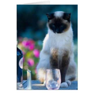 Wine cat greeting card