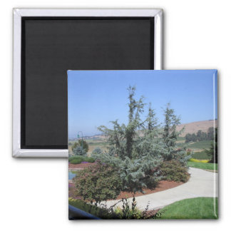 Wine Country 2 Inch Square Magnet