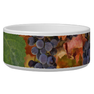 Wine Country Dog Cat Bowl