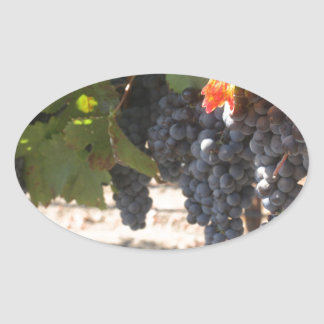 Wine Country Grapes Oval Sticker