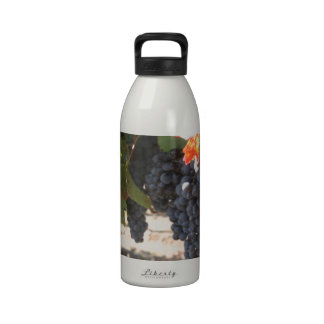 Wine Country Grapes Reusable Water Bottle