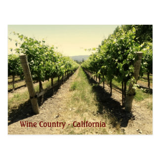 Wine Country Postcard!