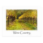 Wine Country  - Vineyard in Autumn Postcard