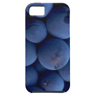 Wine Grape Case