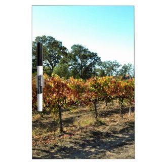 Wine Grapes in Mendocino County, California Dry-Erase Board