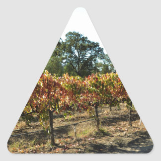 Wine Grapes in Mendocino County, California Triangle Sticker