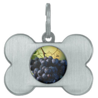 Wine Grapes Pet Tag
