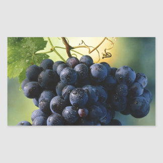 Wine Grapes Rectangular Sticker