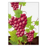 Wine party greeting card