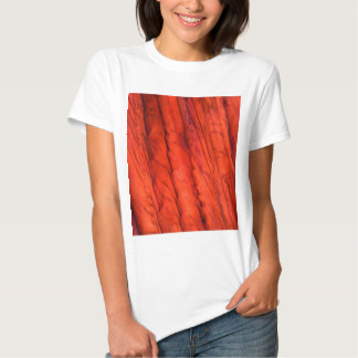 Wine under the microscope - Zinfandel Shirt