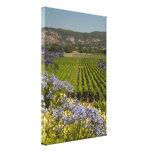 Wine Vineyard and Purple Flowers Canvas Print