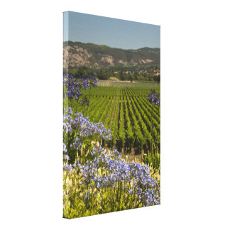 Wine Vineyard and Purple Flowers Canvas Print