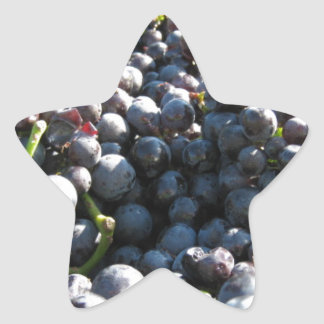 Wine Vineyard Grapes Star Sticker