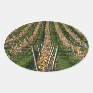 Wine Vineyard Oval Sticker