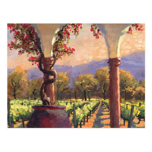 Wine Vineyard postcard