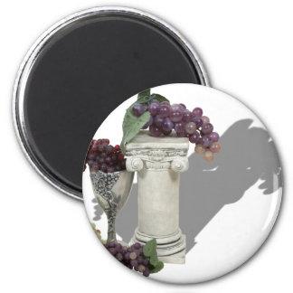 WineCountry060910Shadows Refrigerator Magnet