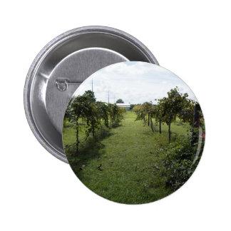 Winery Pinback Button