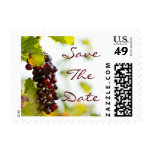 Winery Grapes Save the Date Postage Stamps